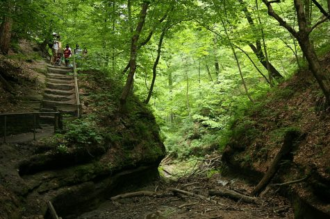 Fun outdoorsy places near and far in Illinois