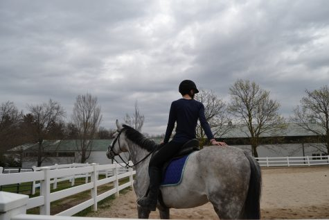 Passion behind the reins