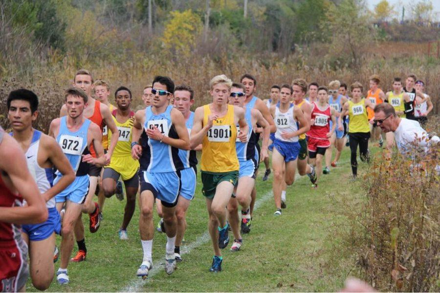 Boys' cross country clinches spot at state