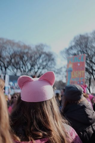 PHOTO ALBUM: Women's march Chicago