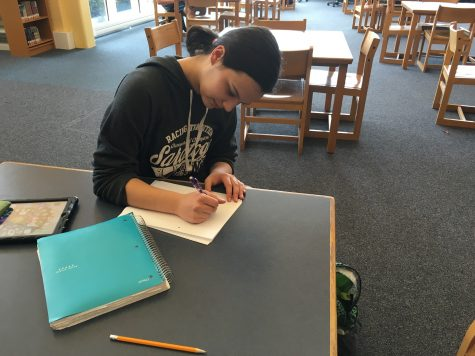 Emerging student writer's success with Reflection
