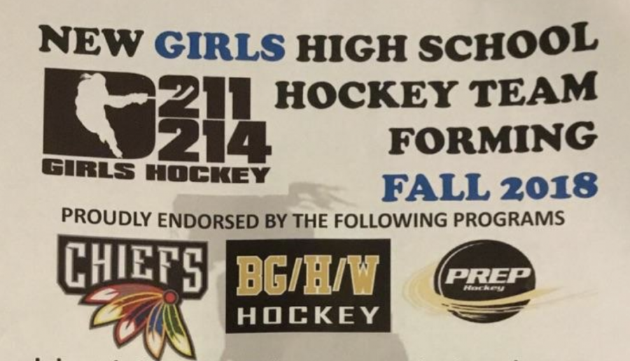 Girls+get+new+opportunity+to+play+hockey