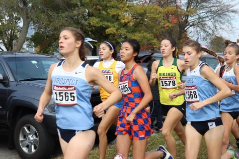 Girls' cross country makes history with second sectional title