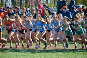 Girls Cross Country continues legacy, places 8th at State