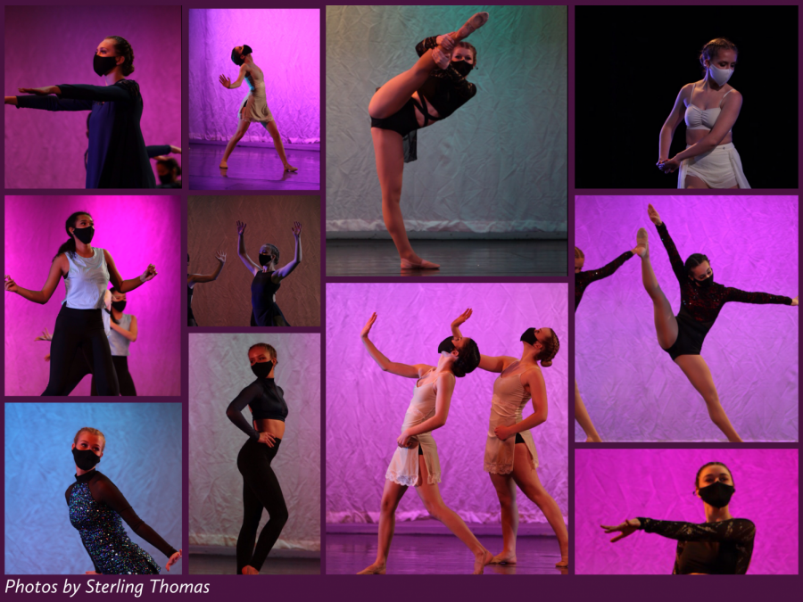 ORCHESIS+HOSTS+%27DRIVE+IN%27+DANCE+SHOW