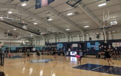Navigation to Story: Multiple Wins at Volley for a Cure